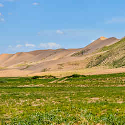 Not a Bush - Mongolia Starting With The Great Steppes
