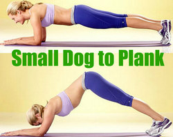 Small Dog to Plank - Power Yoga Poses for Weight Loss
