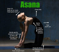 The Market Asana - Power Yoga Poses for Weight Loss